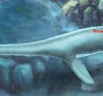Jurassic Park Builder Mauisaurus Evolution 1 Baby