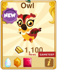 Dragon Story Owl Dragon