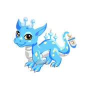 Hanukkah Dragon Teen